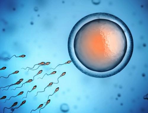 Wirkung von Mobilfunktelefonen auf die Spermienqualität